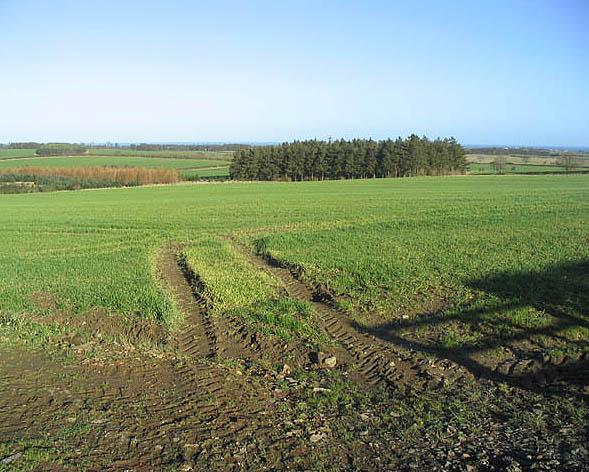 Farmland near Rock Moor House