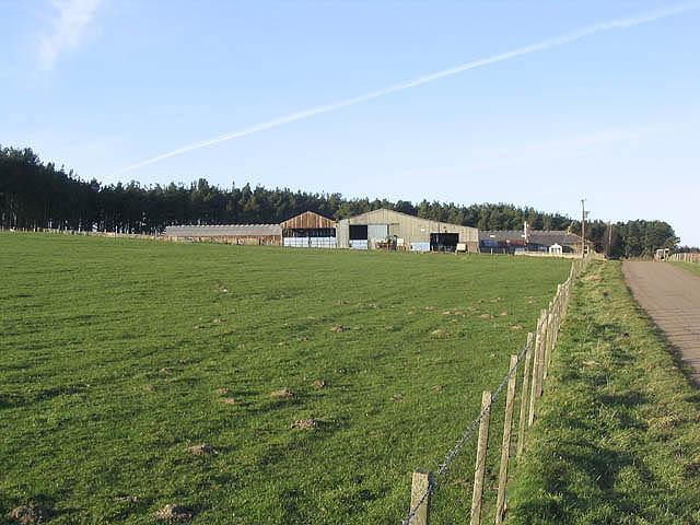 Reaveley Greens Farm