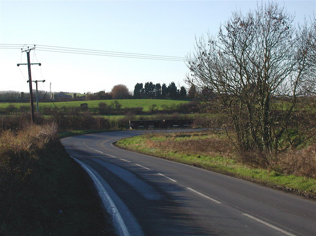 Burton Road, Roos