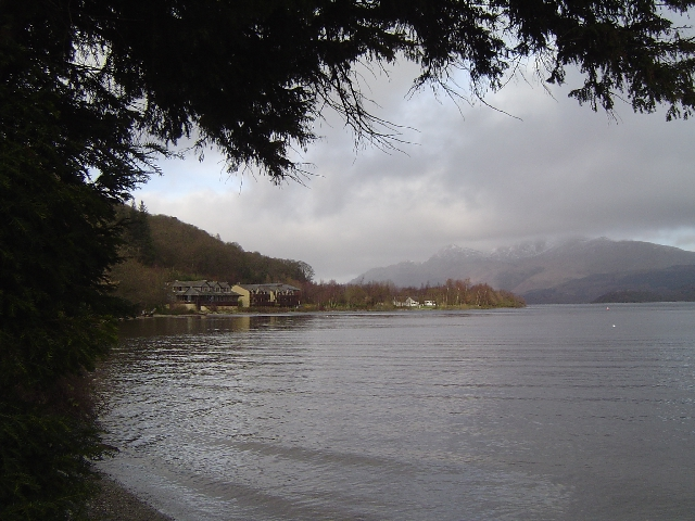 Rhu Wood from Luss Pier