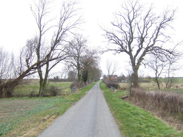 Cater Lane
