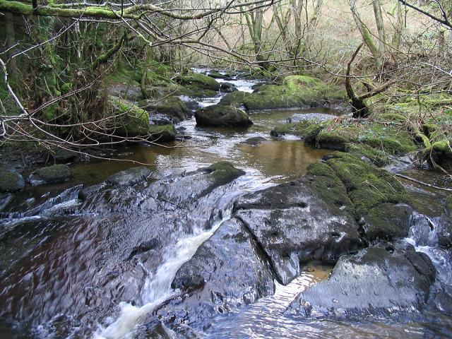 Afon Aled from Pidgeon Bridge