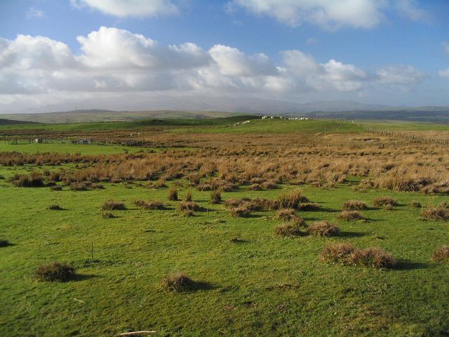 Moorland at Moel Goch