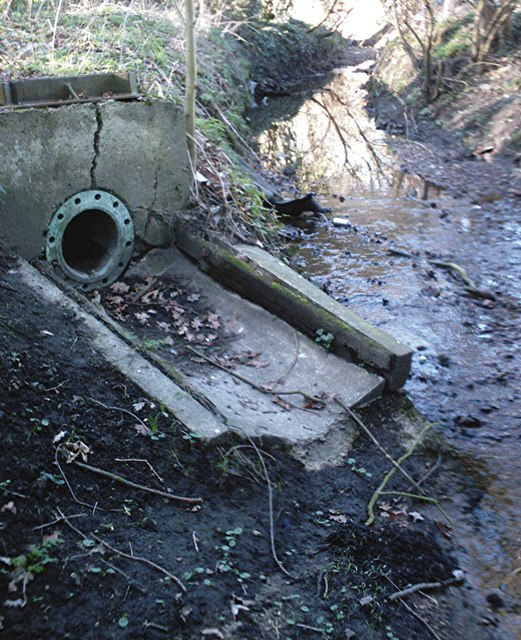 River Roach - Outfall from drainage of Rayleigh Recreational Ground.