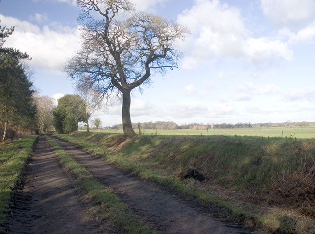 Hales Pasture