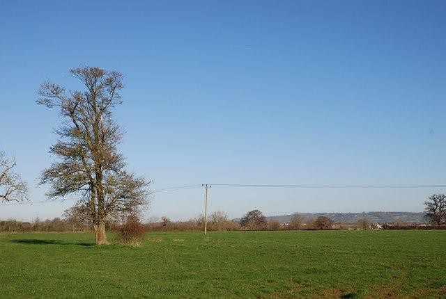 Farmland near Melksham