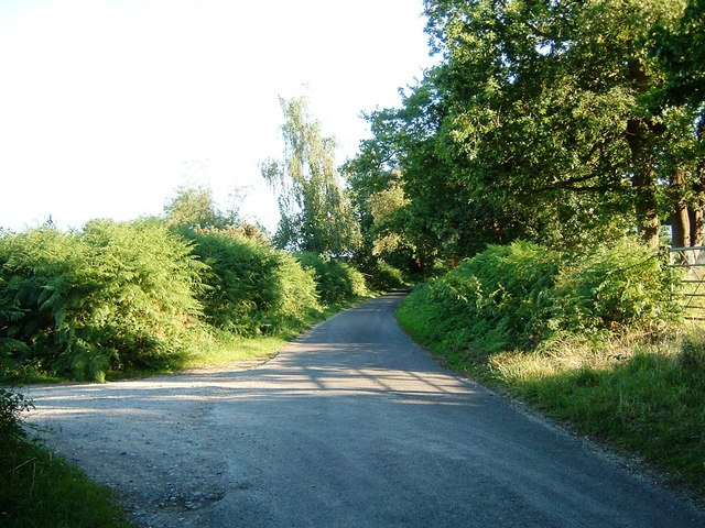 Looking up Hart Hill from Frost Lane