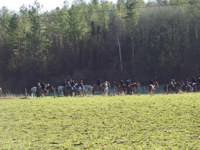 The Waiting Field near Bulbridge