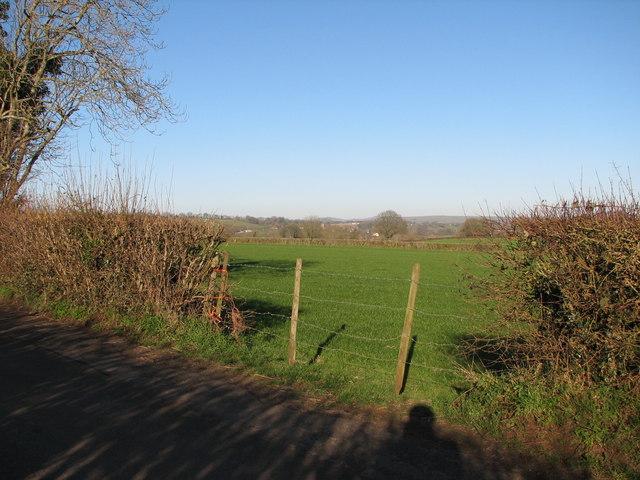 Near Tinker's Hill
