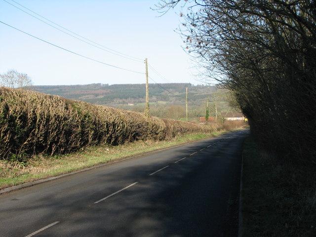 Near Bayford on Old A303