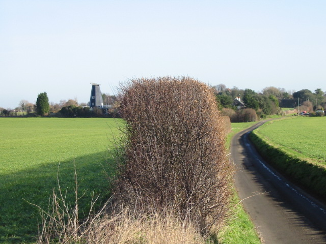 View NE along Mill Lane and hedgerow