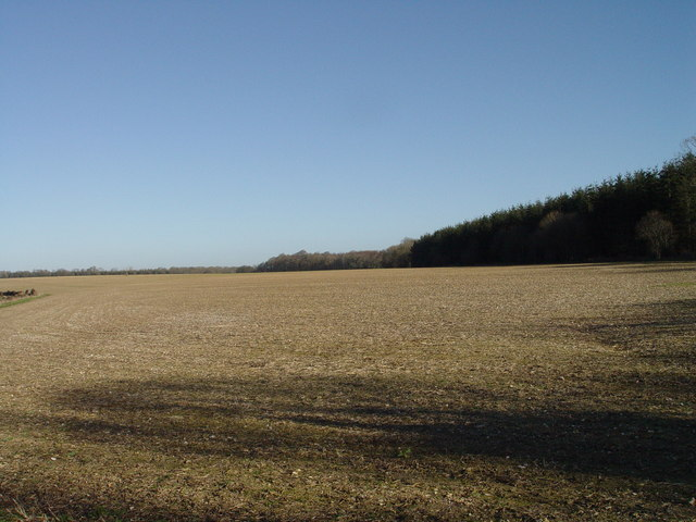 Arable land at Little Down