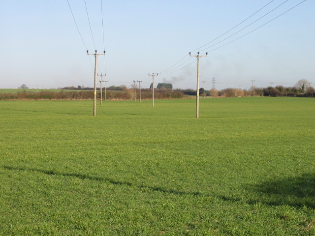 View looking N along an avenue of power line poles