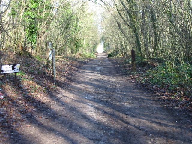 View along a Roman road towards Telegraph Farm