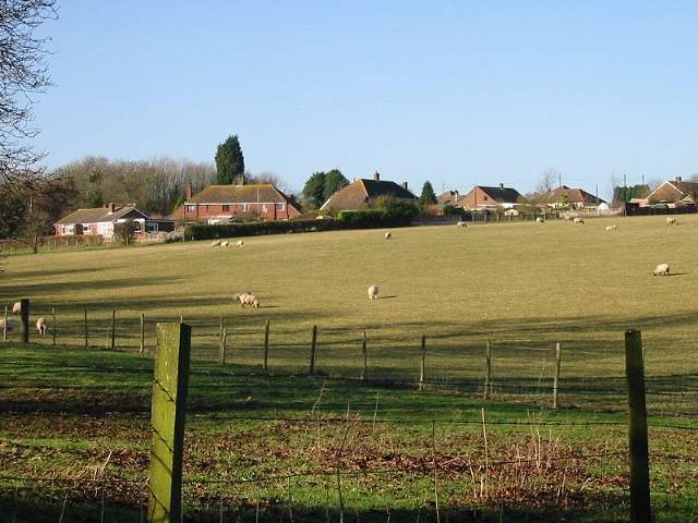 Houses on Strakers Hill and sheep in field, from Stoneheap Lane