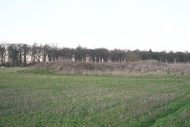 Long Barrow near Westwood Farm