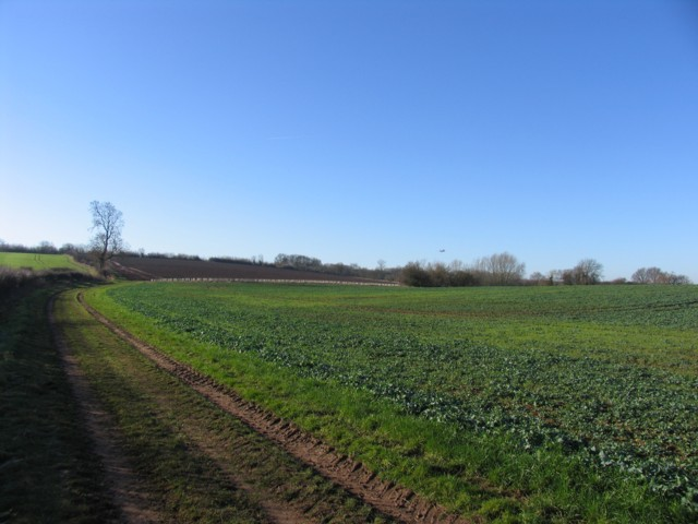 Fields near to East Midlands Airport