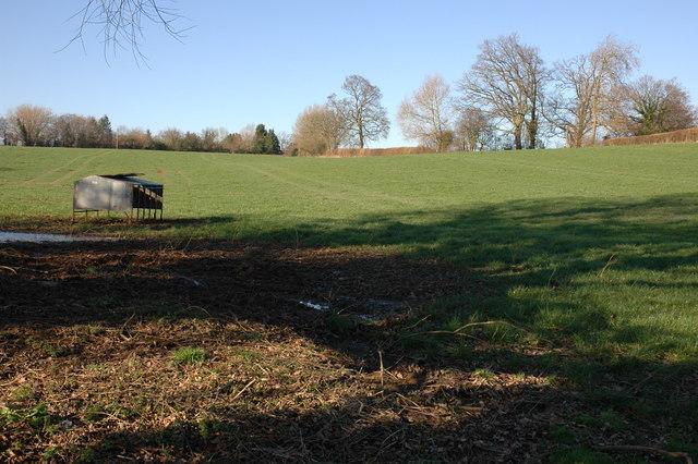 Field and feeding trough, Haven, near Dilwyn
