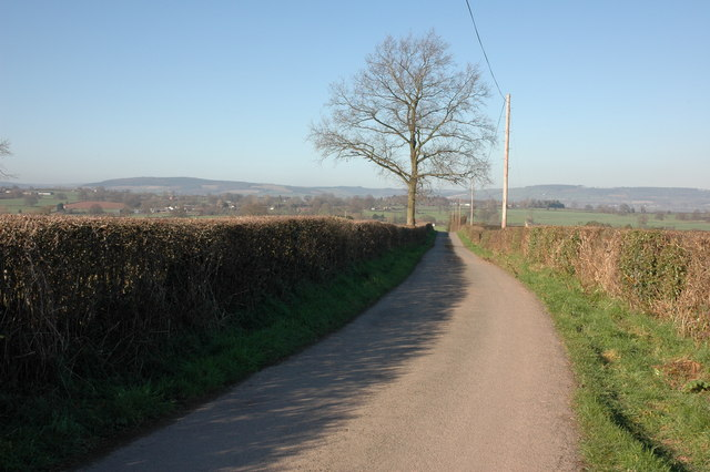 Lane to the east of Henwood Wood