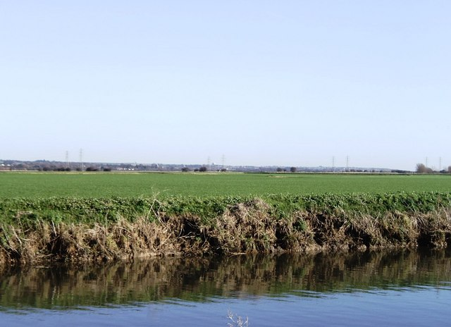 North bank of River Stour east of Plucks Gutter