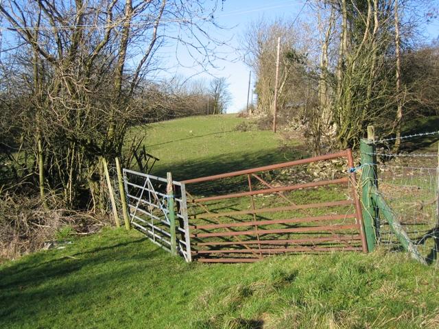 Field Gates at Tan-y-Cefn