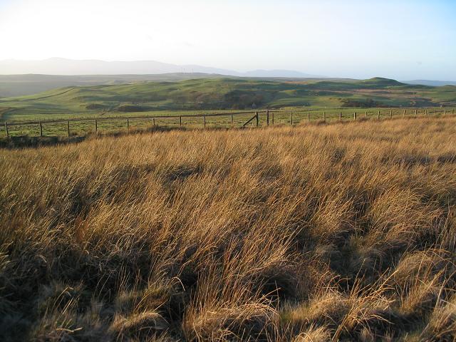Moorland  on Creigiau Llwydion