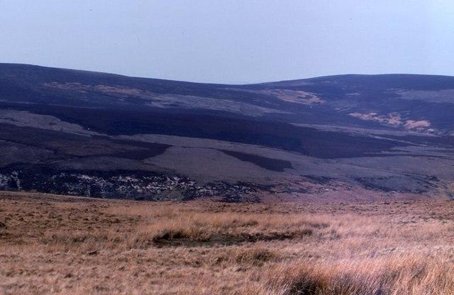 Burn Moor