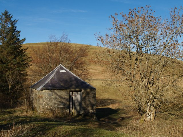 Old barn and ash tree, Sundhopehead.