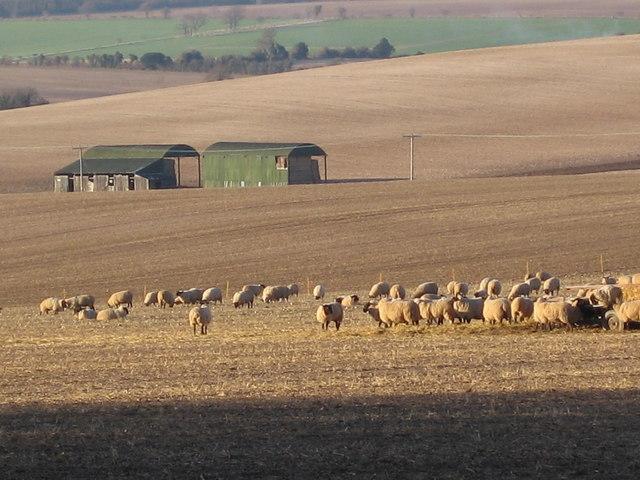 Barn near Sparsholt