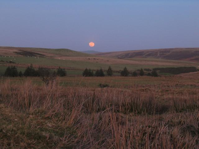 Moonrise over Aled valley