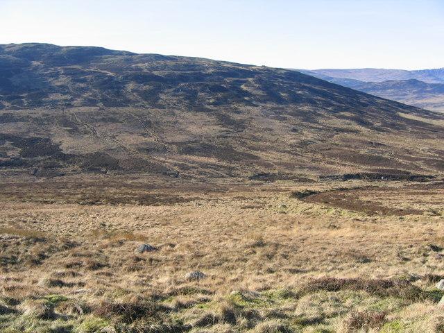 Upland sheep pasture