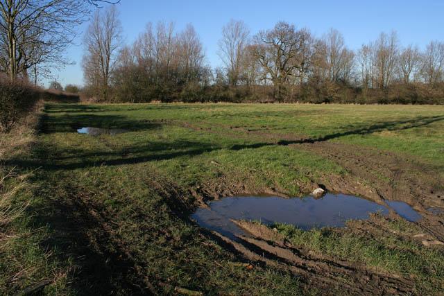 Farmland at Corby Pasture