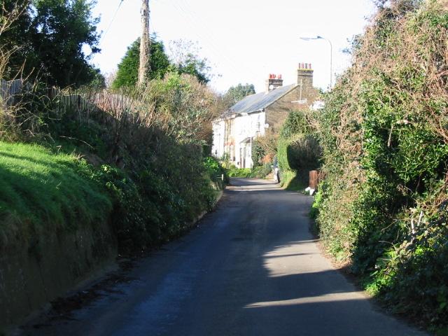 Cherry Lane, Great Mongeham