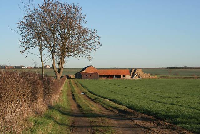 Farm track and barns near Sunnyside Farm