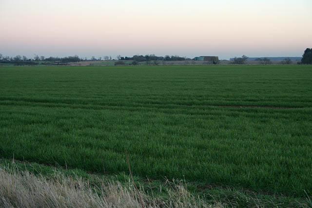 Farmland near Temple Wood