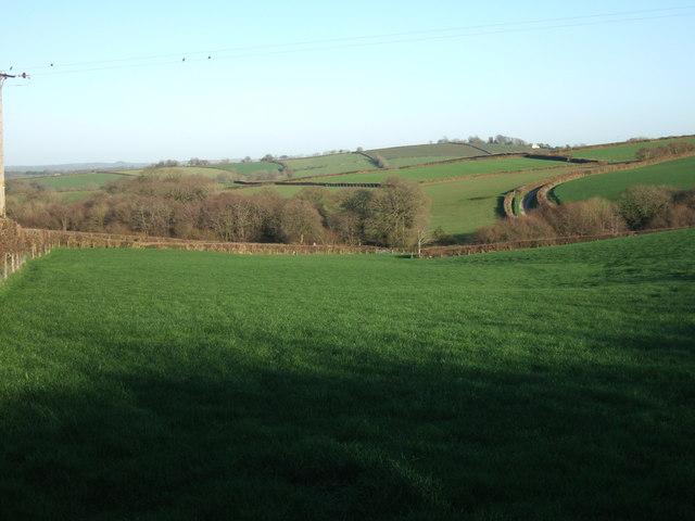 View from near Oak Cross
