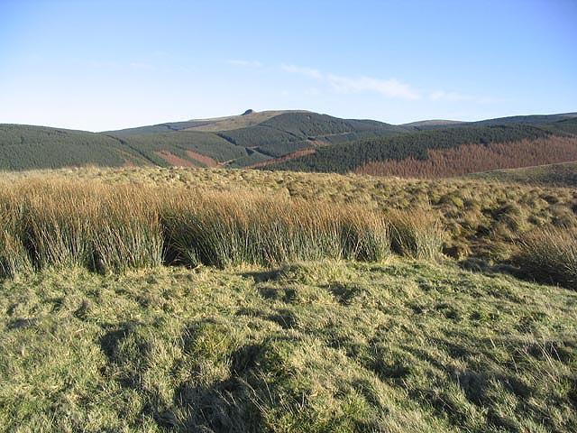 The summit of Meg's Hill