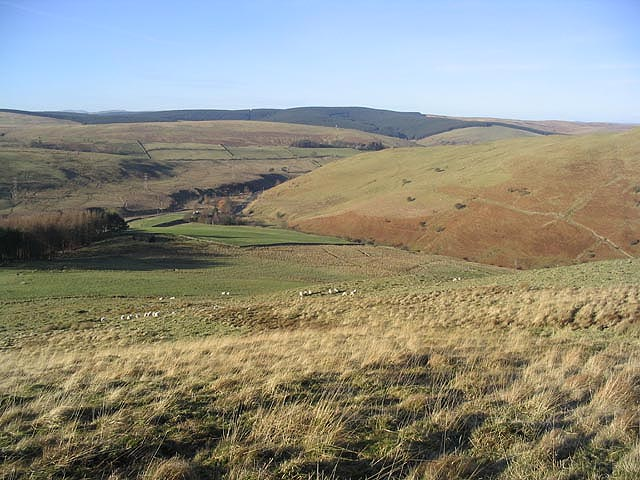 Rough grazing on Meg's Hill