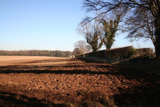 View towards Green Man Farm