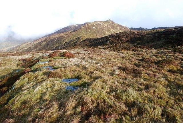 Moorland at Cnoc nam Broighleag