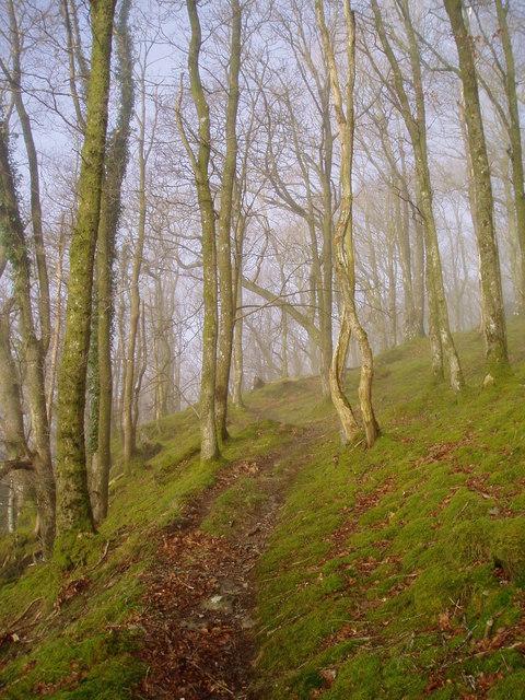 Footpath near Fronfeuno