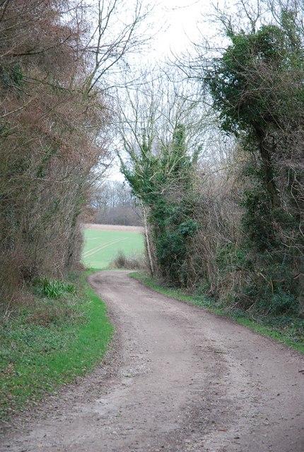 Track round Weekley Coppice