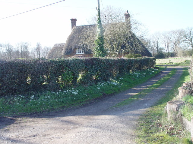 Cottage and Snowdrops