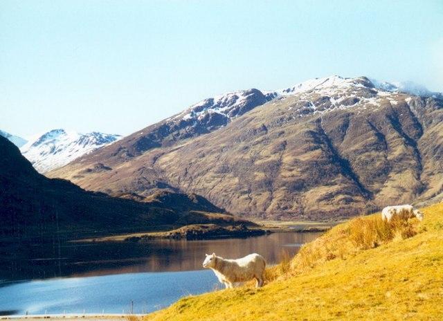 Head of Loch Duich