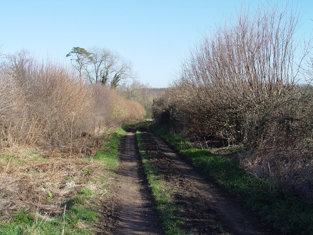Bratch Lane