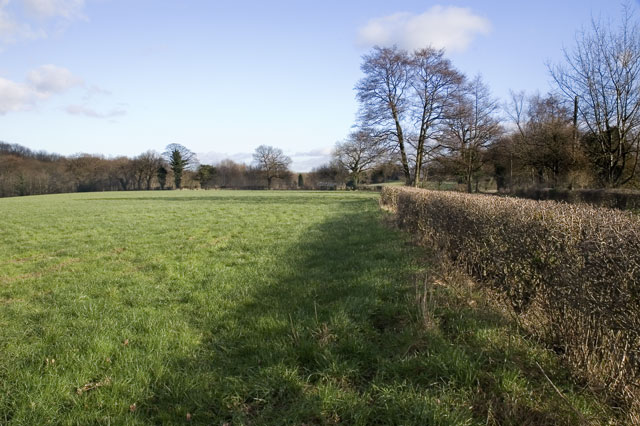 Field next to Fullers Gate