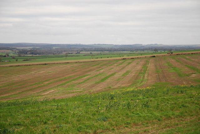 Farmland above Tarrant Monkton