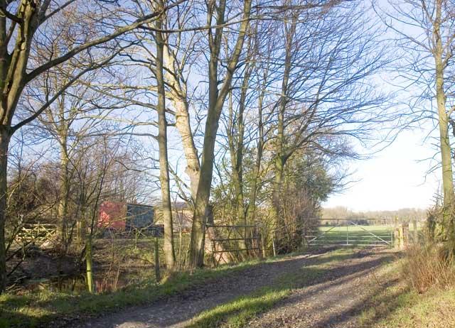 The Road to Hucknall Farm