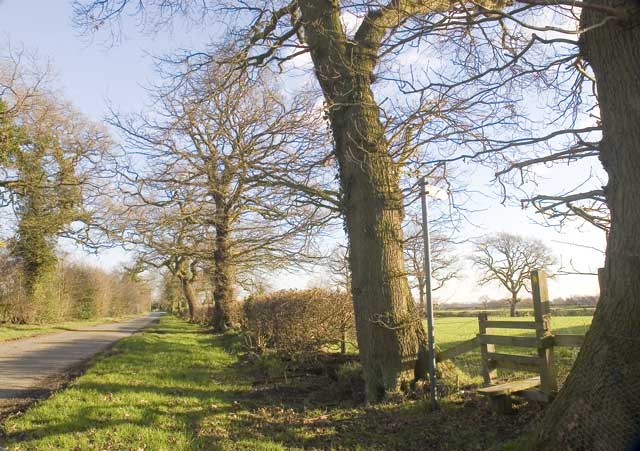 The Road away from Hucknall Farm