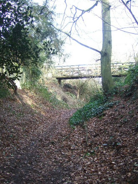 Bridleway to the Nower